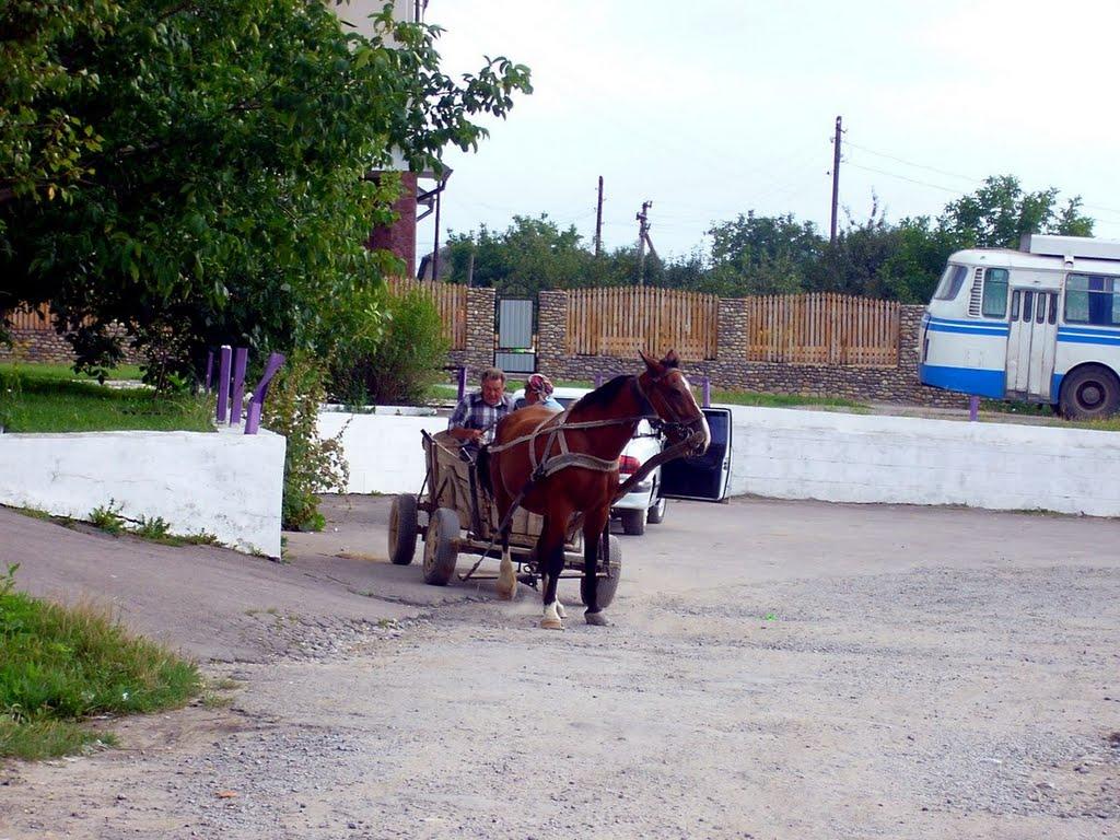 Čortkiv autobusové nádraží, Чортков