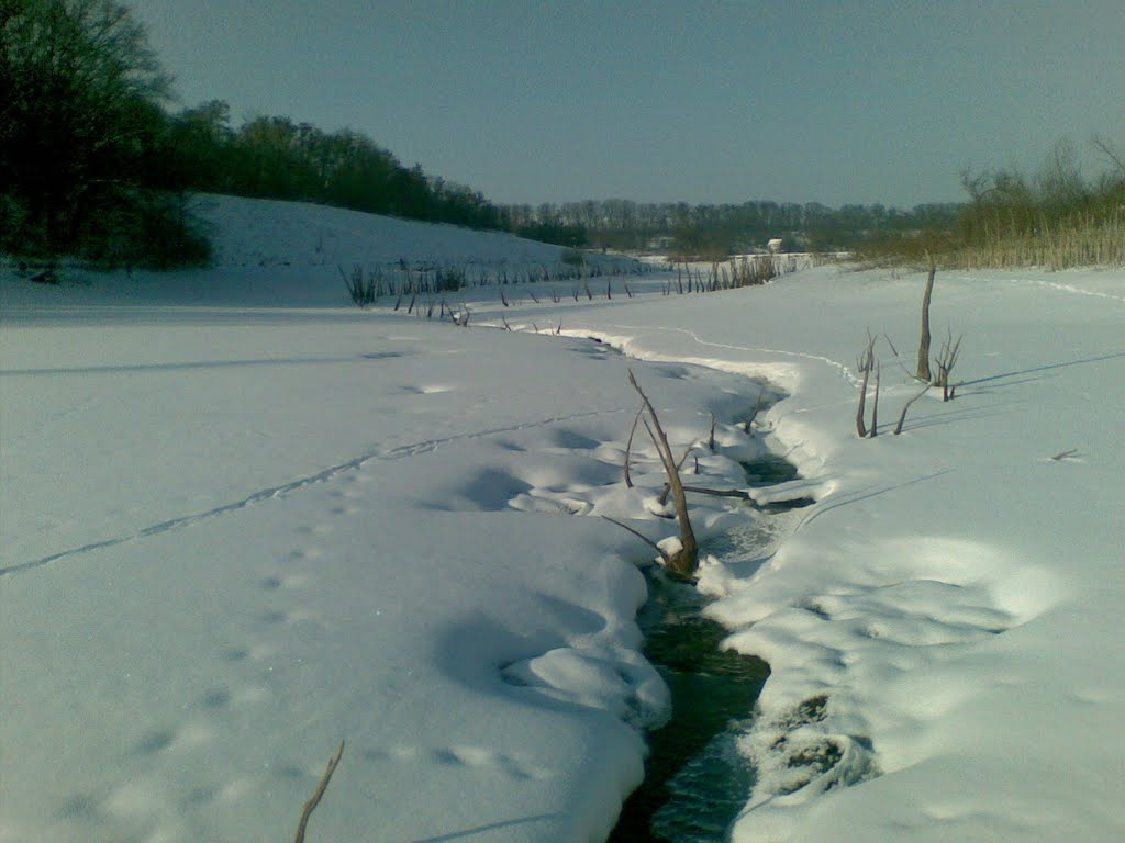 a River of Birky, Борки