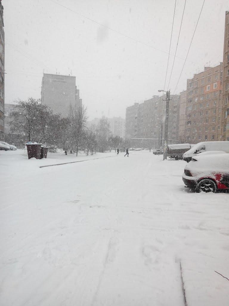 Ул. Квартальная. Январь 2014, Песочин