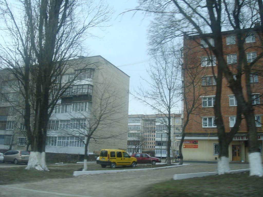 Жилые дома в Дунаевцах, Дунаевцы