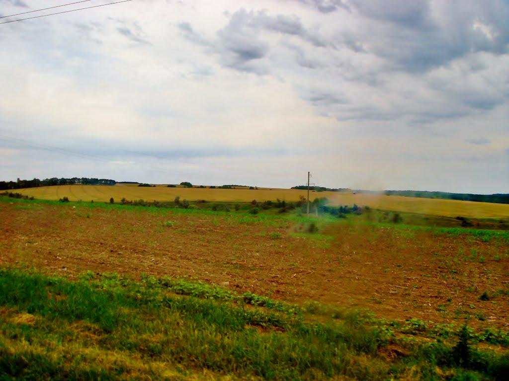 14.06.2012  Дорога Р-04. Поля за пгт Лысянка., Лысянка