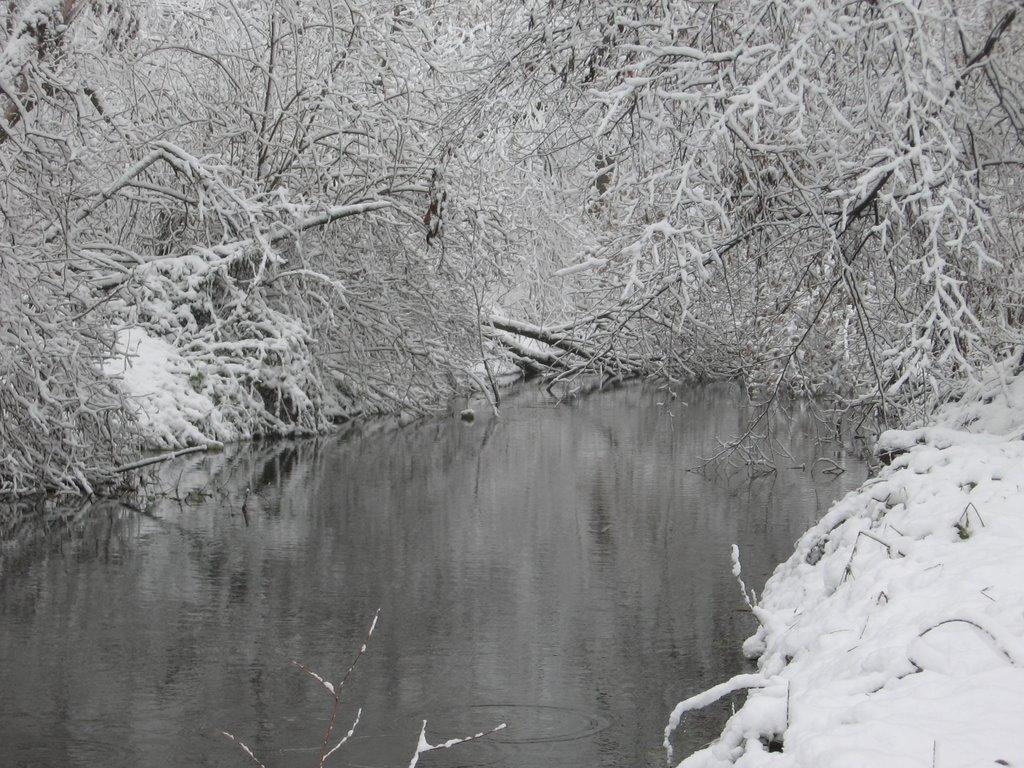 первый снег, Борзна