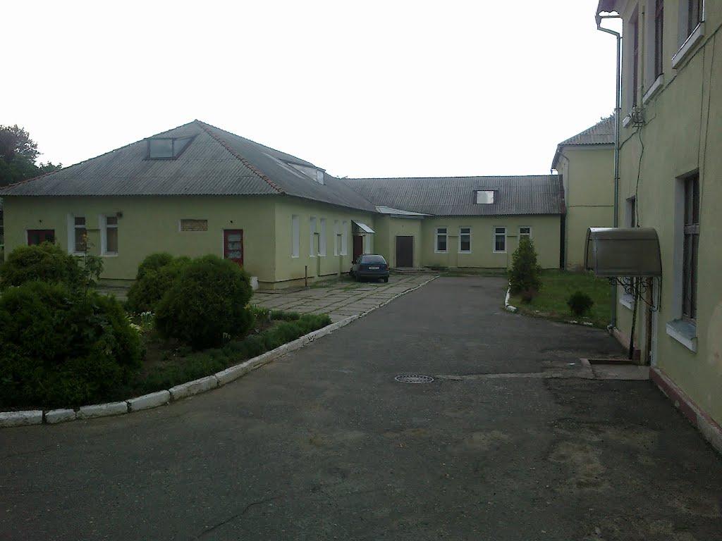 Двір гімназії, Кицмань