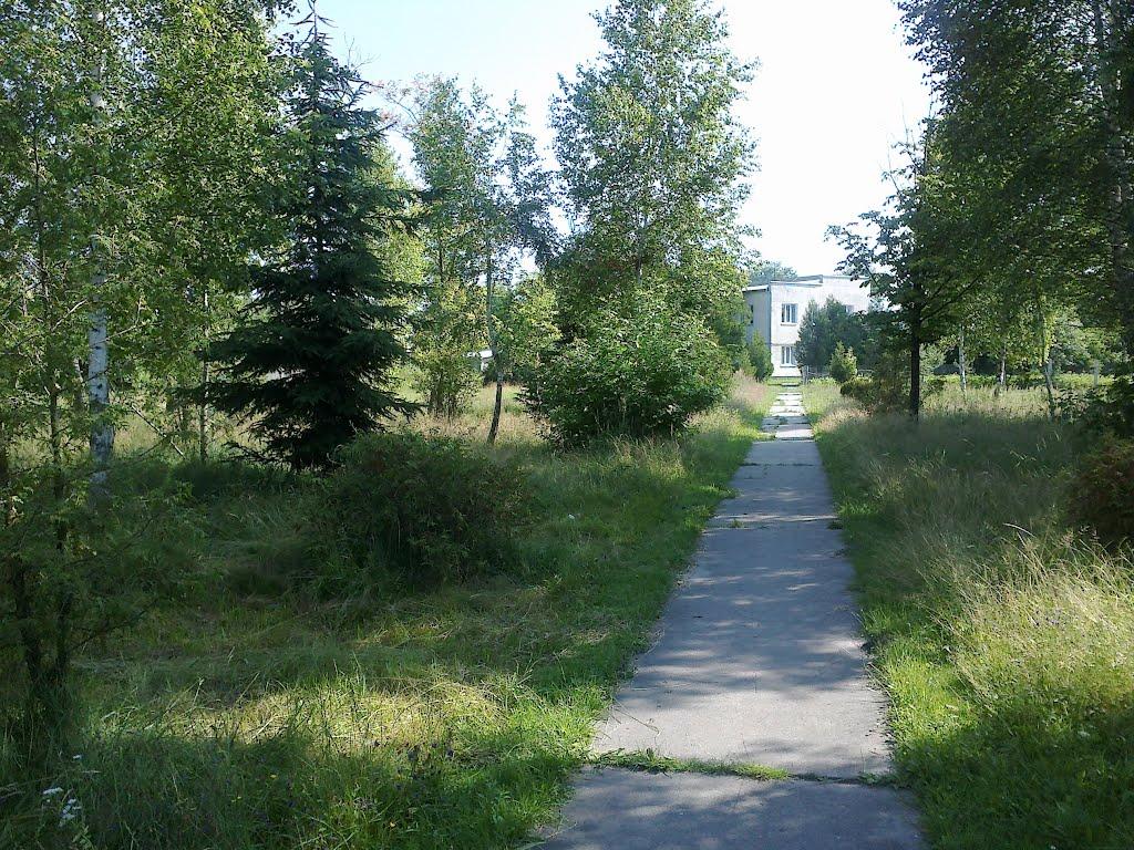 """Дорожка к """"Конторе"""" 28.06.2012, Камень-Каширский"""